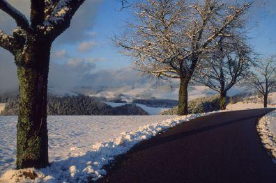 Schwarzwald 1997