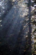 2005-californien-023