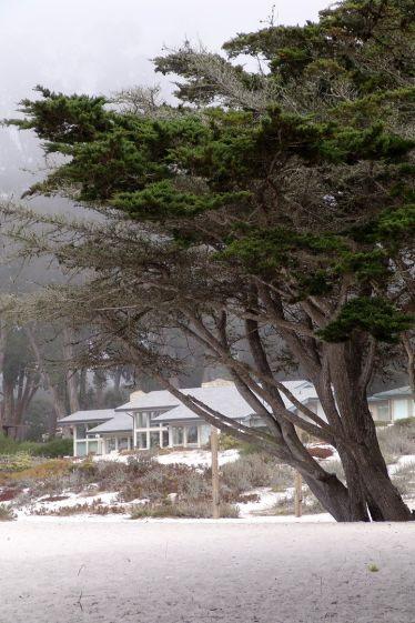 2005-californien-097