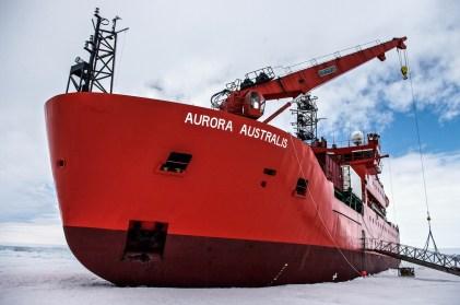 Antarctica (244 of 290)