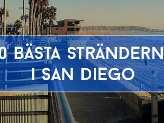 10 Bästa Stränderna i San Diego