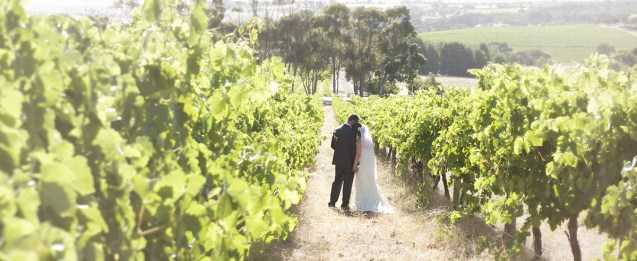 SC Pannell Winery wedding
