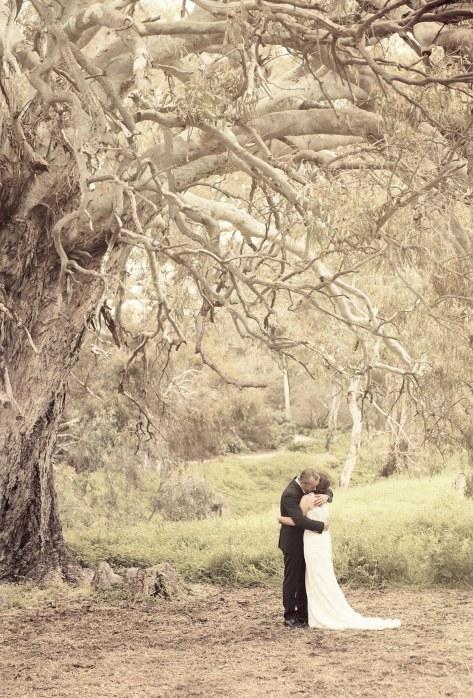 Kissing under the Brooklyn Farm tree