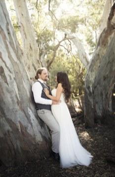 Bride and groom on tree