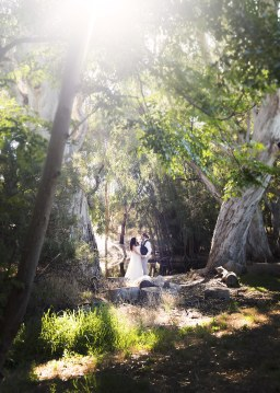 Bride and groom under the sun
