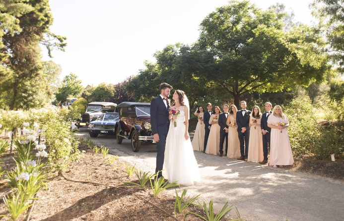 Bridal party and wedding cars