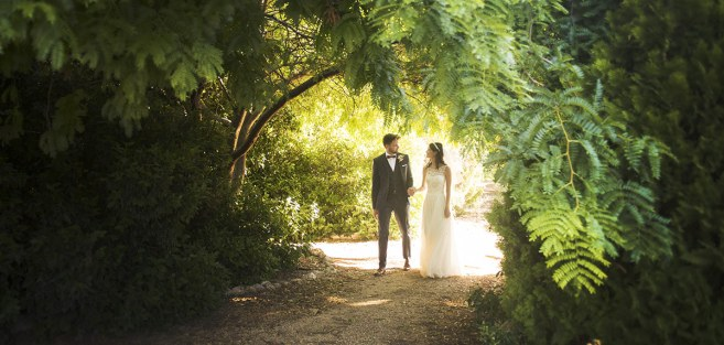 Bride and groom in foliage