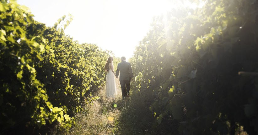 Walking amongst the vineyards