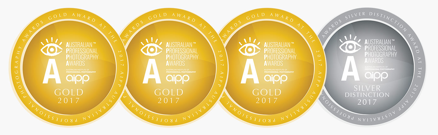 2017 AIPP APPA Awards