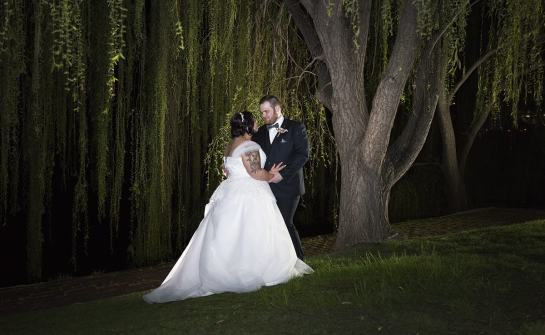 Under the weeping willow at night