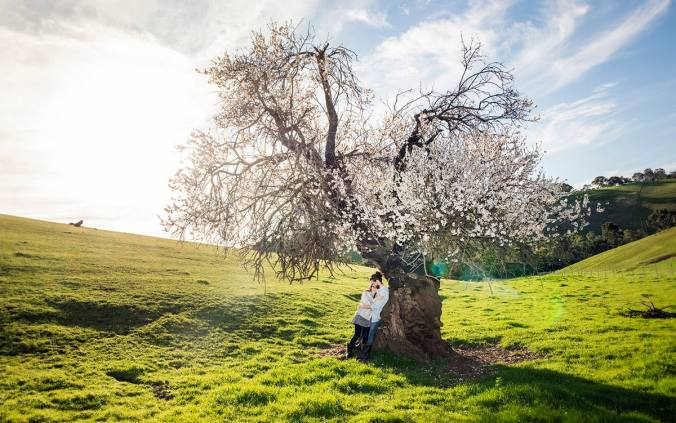 Under a beautiful tree