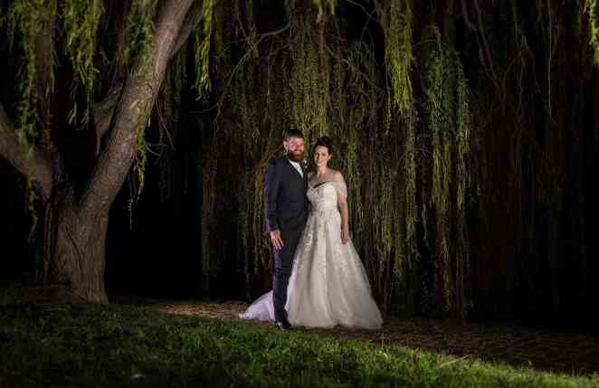 under the st francis winery trees at night