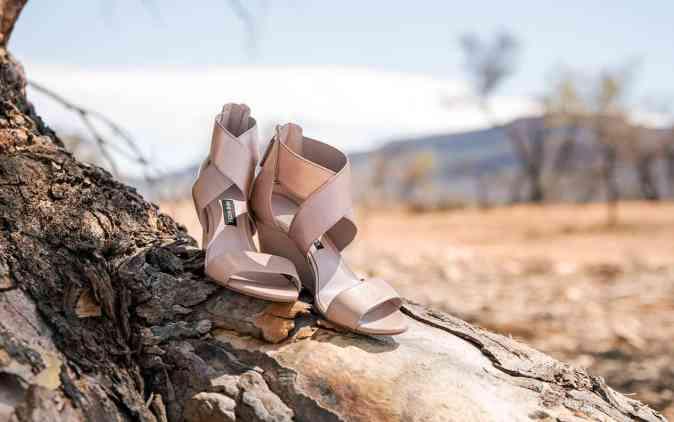 Wedding shoes on tree