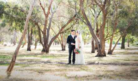 bride and groom under gum trees in veale gardens