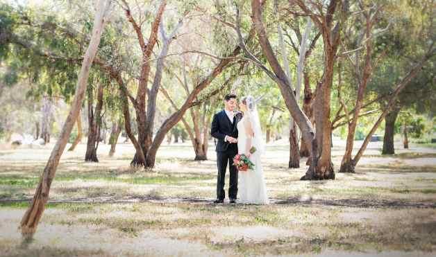 bride and groom under gum trees in veale gardens