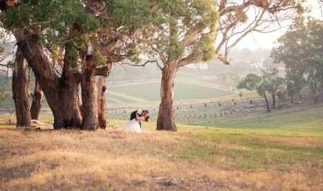 Kisses amongst the gum trees