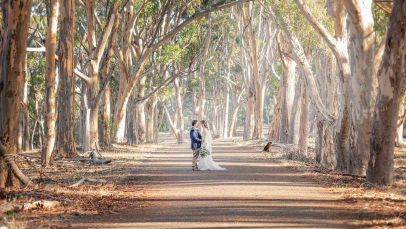 Belair National Park wedding photography