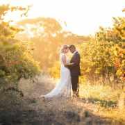 Ekhidna wines wedding vineyards