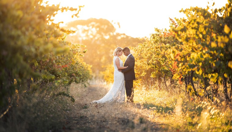 Ekhidna wines wedding vineyards