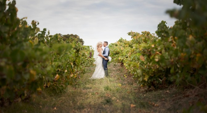Bride and groom in the vineyards