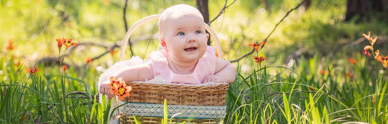 baby in a basket in the grass 2