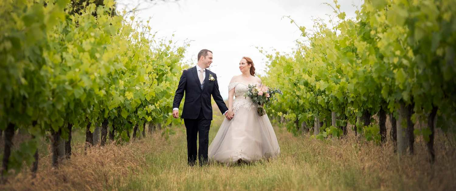 Bride and groom in the Ivybrook Farm vineyards