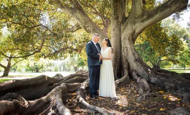 bride and groom under a moreton bay fig