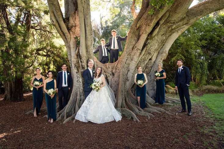 bridal party surrounding a tree