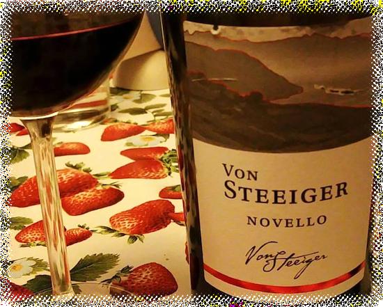 Von Steeiger Novello Merlot-Cabernet Veneto IGT