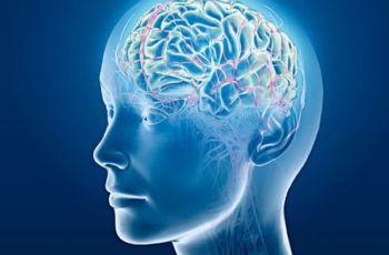 5 заблуждения на нашия мозък, които ще ви учудят