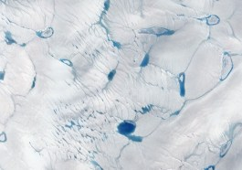 led v grónsku