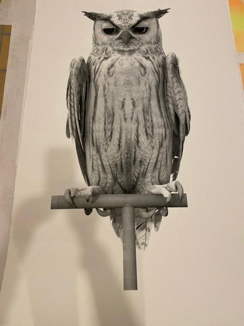 Ann Lislegaard og Louise Hold Sidenius: Oracles, Owls… Some Animals Never Sleep