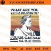 What Are You Gonna Do Stab Me Julius Caesar 44 B.C SVG