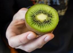 kiwi,naturfag,sørumsand_vgs