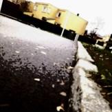 nærområdet,mobilfoto