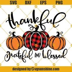 Thankful Pumpkin SVG, Grateful And Blessed SVG, Thanksgiving SVG, Pumpkin SVG