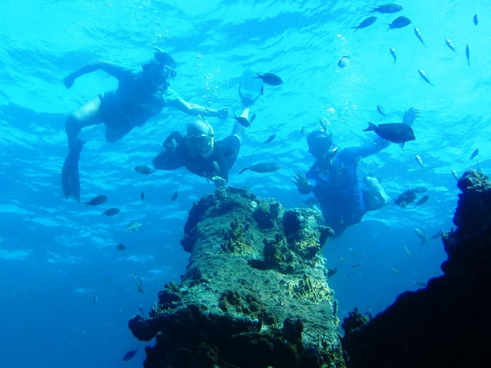 Snorkeling the Rhone
