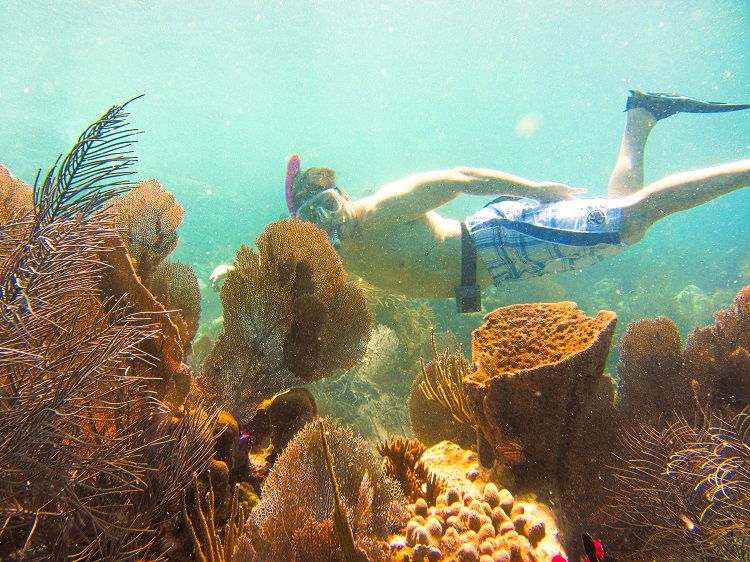 Chad Snorkeling a reef