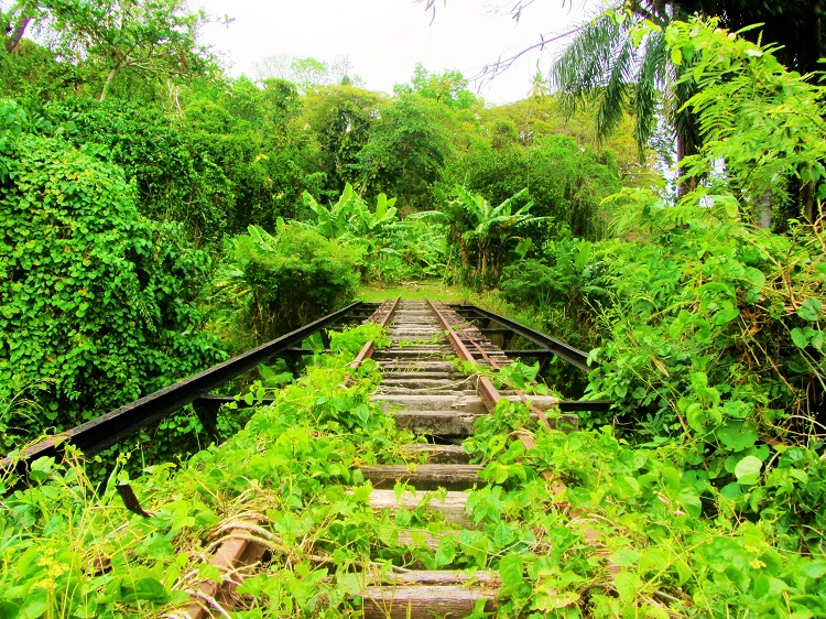 railway tracks on St Kitts