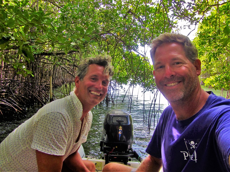 In the mangroves at Tyrrel Bay
