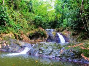 Argyle Waterfall 4