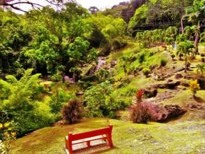 Green Hill Waterfall 1