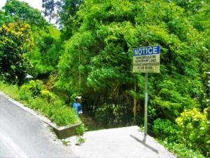 Swiss Family Robinson Waterfall 1