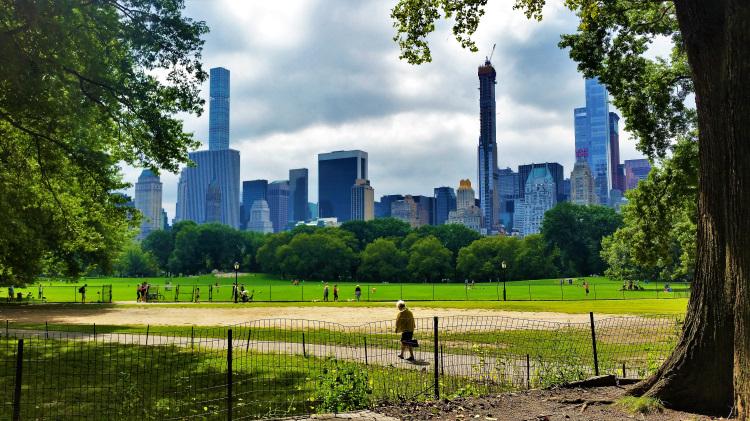 USA - New York - Central Park POTD 1