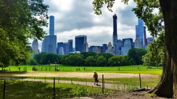 USA - New York - Central Park POTD 1