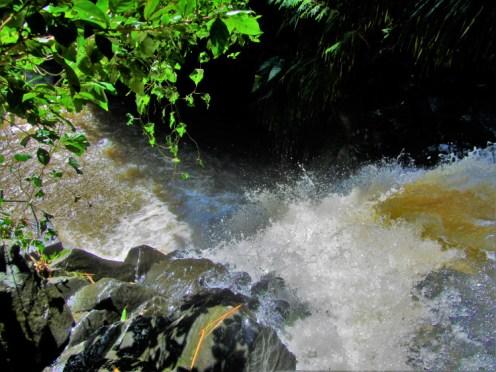 Grenada - Annandale Falls 4