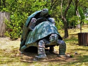 Island Tour - Tortious Statue
