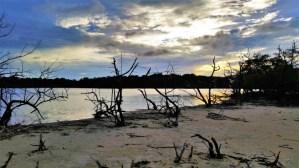 Salt Pond Walk - Salt Pond