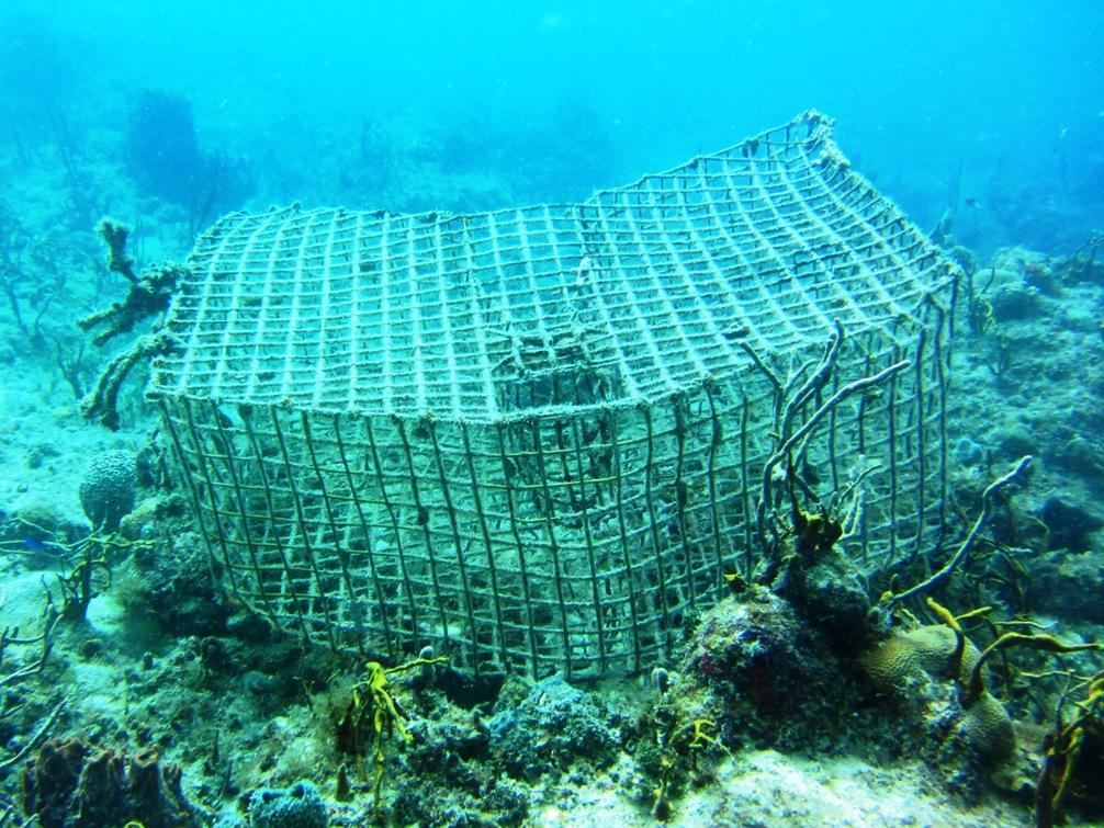 Underwater - Lobster Trap