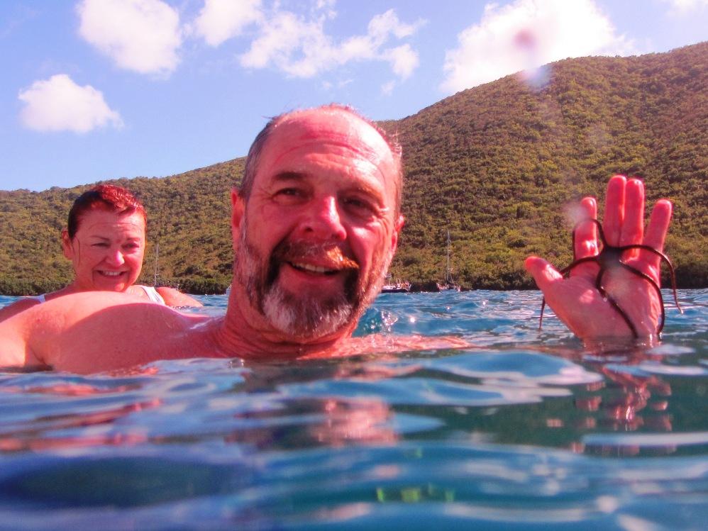 Charterer Holding Brittle Starfish